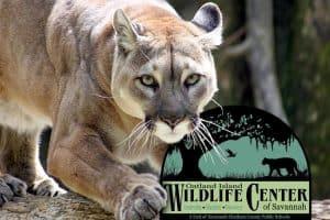 oatland island wildlife center