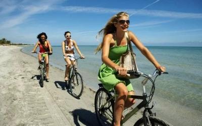 charleston bicycle rental